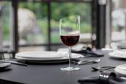Villeroy & Boch NewMoon Rode wijnglas 405 ml - Set van 4